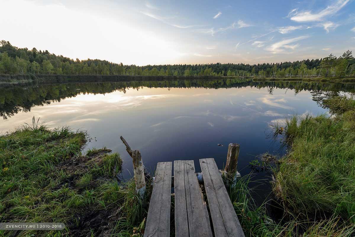 Бельское болото