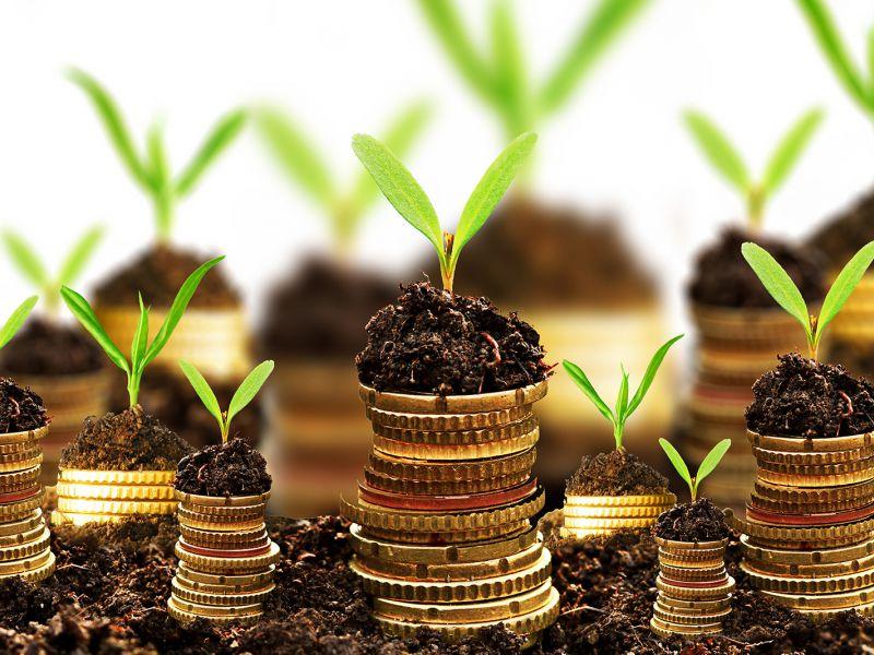 Порядок рассмотрения обращений по определению кадастровой стоимости