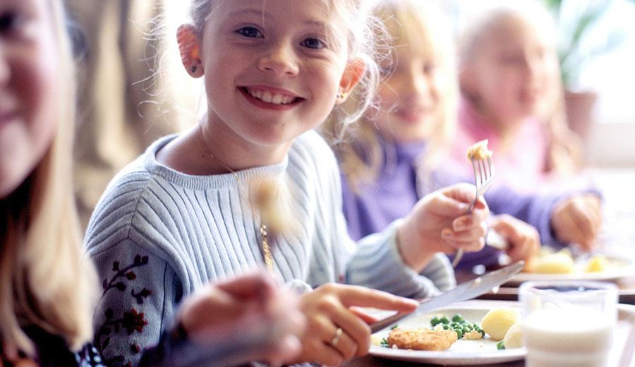 Питание детей из многодетных семей