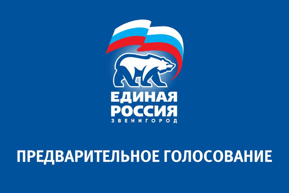 Предварительное голосование «Единая Россия»