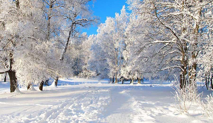 5,2 тысячи сотрудников ЖКХ МО ликвидируют последствия снегопада