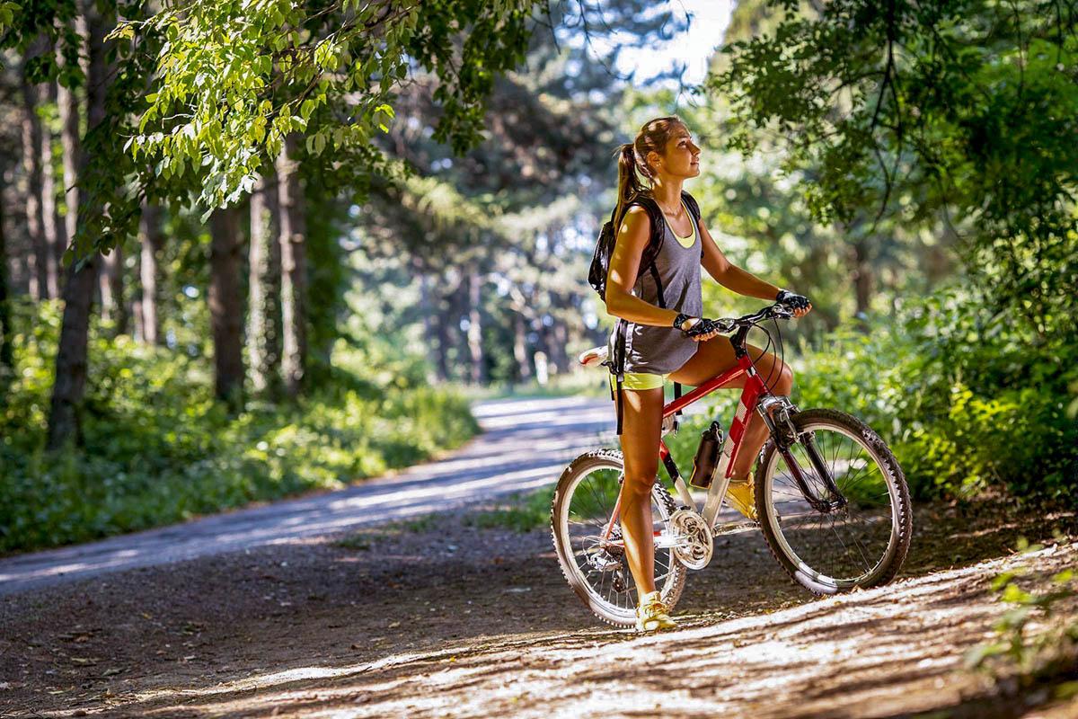 Тучково и Звенигород свяжет 20-километровая велотрасса